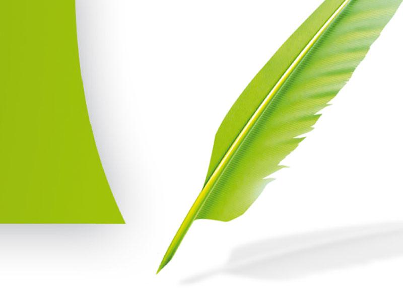 Journal La Plume Verte pour Chêne Vert Conseil
