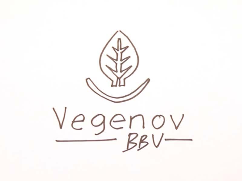 Motion design de vœux pour Vegenov