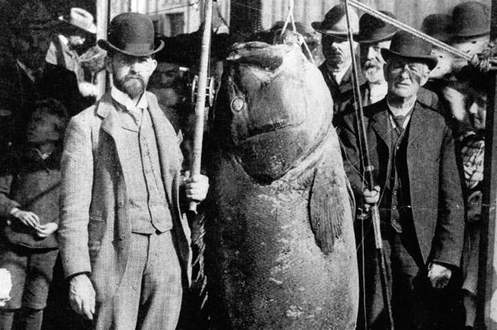Un gros, gros poisson !