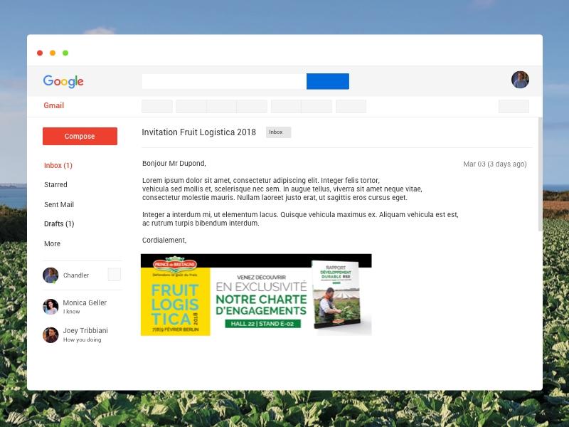 Mailing Prince de Bretagne Rapport RSE