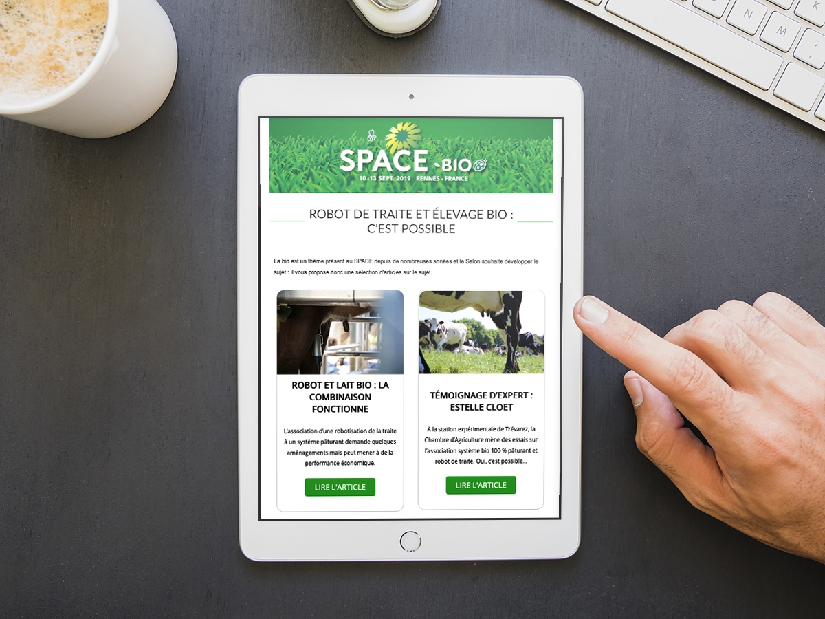 Newsletter Space