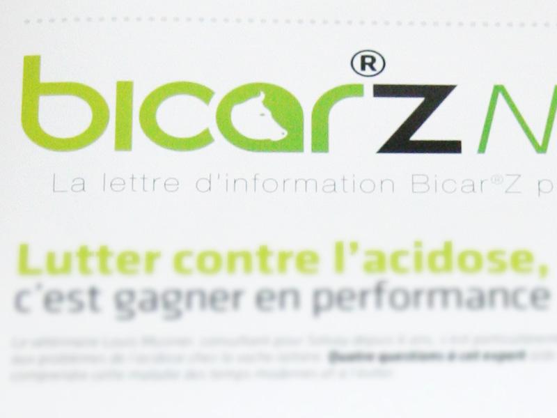 Newsletter pour BICARZ